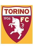 Torino_logo_medium
