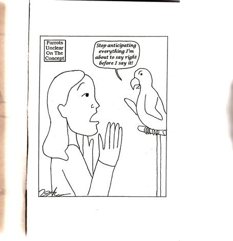 Parrot1_medium