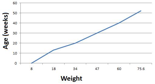 Jweight_medium