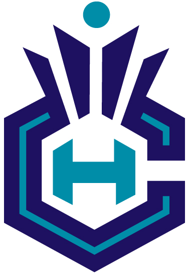 Hornets-crown-ch-logo_1__medium