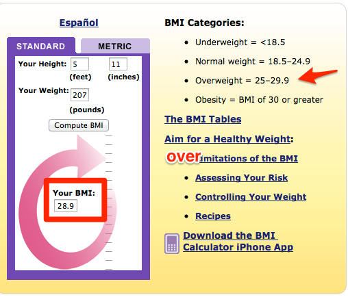 Calculate_your_bmi_-_standard_bmi_calculator-2