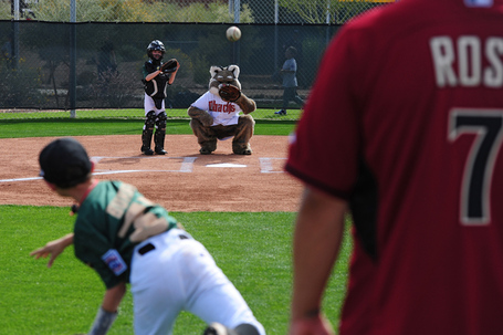 20140222_ahwatukeelittleleague_js312small_medium
