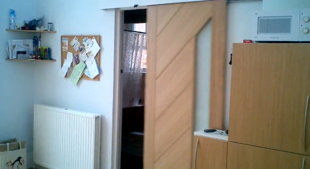 star trek door