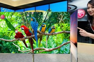 LG 55-inch OLED TV