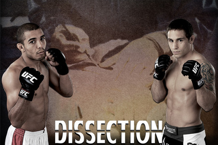UFC 142 RIO: Jose Aldo vs. Chad Mendes Dissection - Bloody Elbow