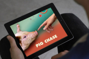ipad pigs