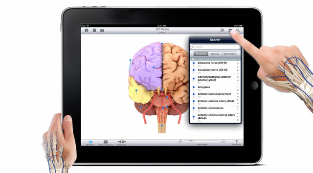 Pocket Brain for ios