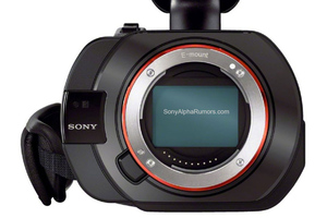 Sony Alpha Rumors VG-900 leak
