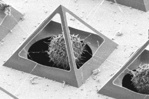 Microscopic pyramid