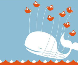 twitter fail whale