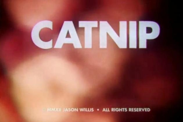 Catnip Sundance short film
