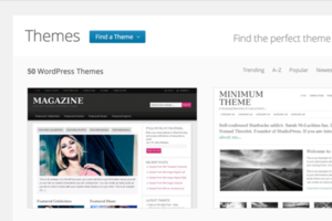 WordPress.com themes