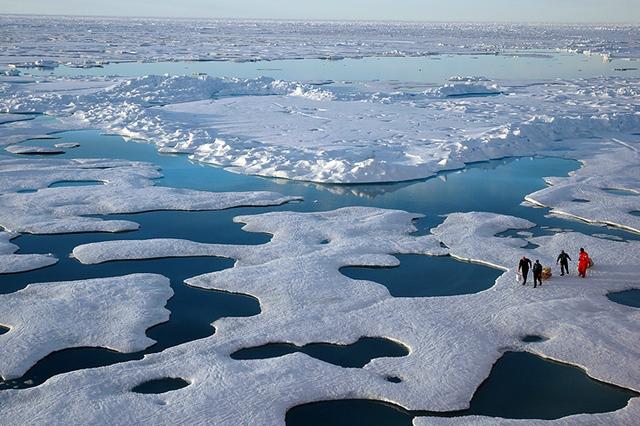 Arctic sea ice by NOAA