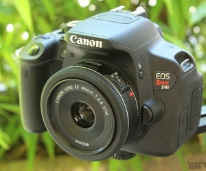 Gallery Photo: Canon T4i pictures