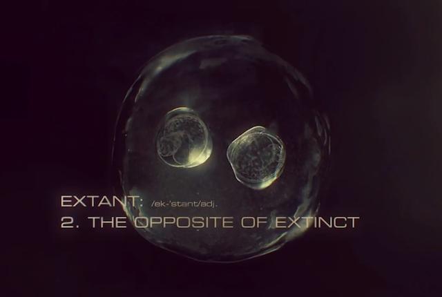 extant (teaser crop)