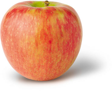 Honeycrisp
