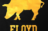 Floyd-iowa_preview_1024x1024_small
