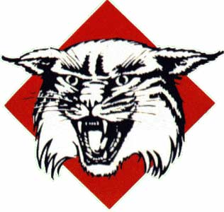 Davidson_wildcats_logo_medium