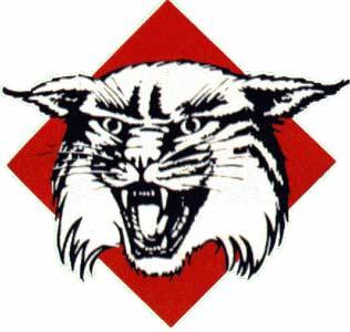 Davidson_wildcats_logo_medium
