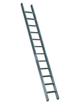Ladder_medium