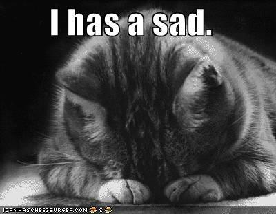 Funny-pictures-sad-cat-blackandwhit_medium