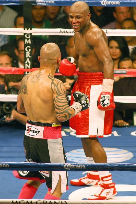 Floyd Mayweather vs Miguel Cotto fight photos gallery from Las ...