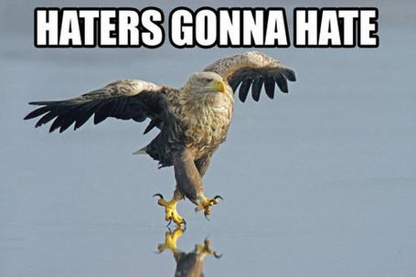 Haters14_medium