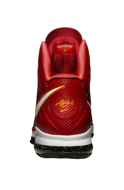 LBJ_VIII_Red_nbaFinals_005