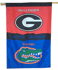 House_divided_flag_florida_vs