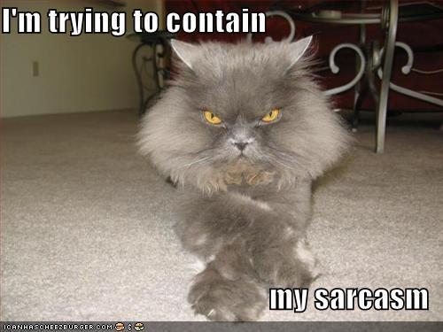 http://cdn2.sbnation.com/imported_assets/116294/sarcasm.jpg