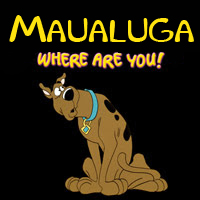 Nfl_rey_maualuga_where_are_you_image_medium