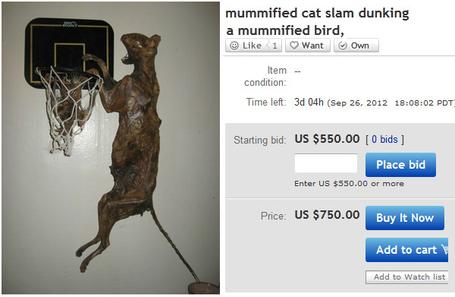 Mummified-cat-1_medium