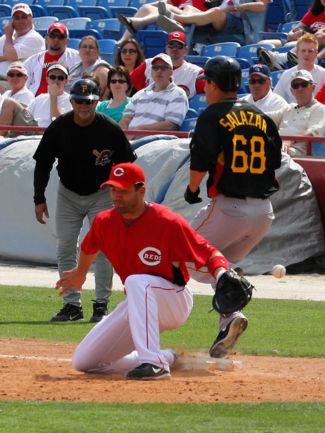 Votto-salazar_medium