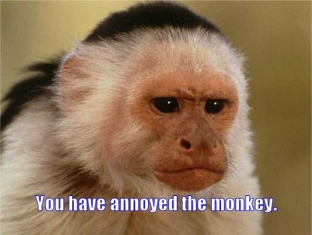 You-have-annoyed-monkey_zps049a7ae5_medium