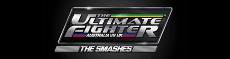 Tuf_thesmasheslogo_medium