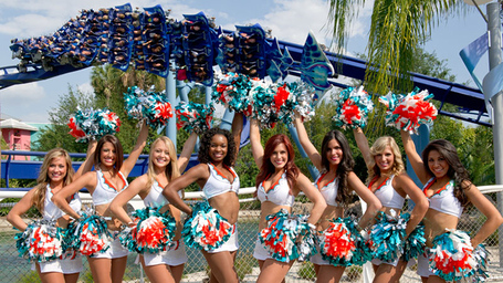8f10d639fba44d719ef2945214bbf557_20120413_miami-dolphin-cheerleaders_49_780x438_medium