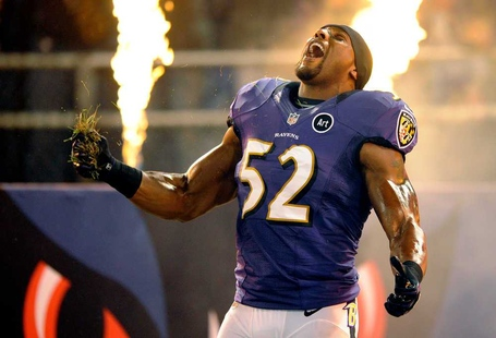 Ray-lewis-3_medium