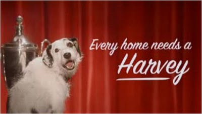 Every_home_needs_a_harvey_medium