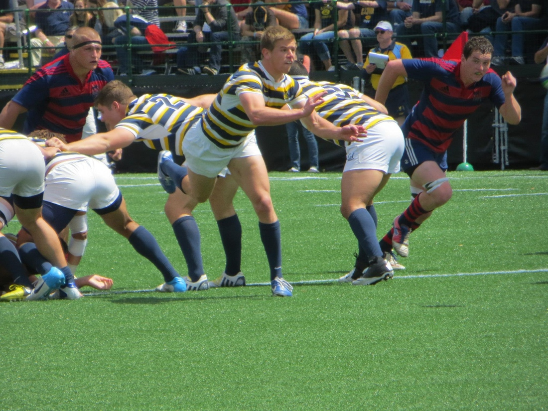 p e p for rugby essay This form is meant to capture all non-contact youth rugby participation throughout the country participation includes pe classes, after-school programs, summer camps, clinics, boys and girls clubs, ymcas, girl scouts, boy scouts, and other youth rugby initiatives.