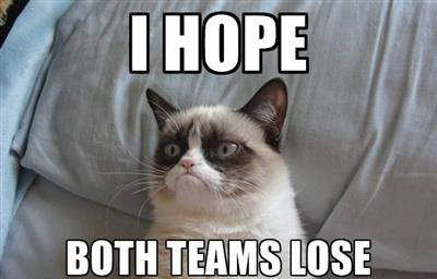 Grumpy-cat-super-bowl-hater_medium