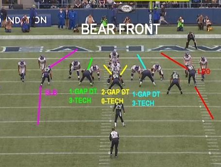 Bear_front_medium_jpg_medium