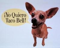 Taco_bell_dog-200x160_medium