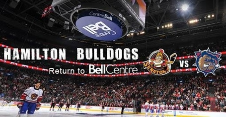 Hamilton-bulldogs-24672-regular_medium_medium