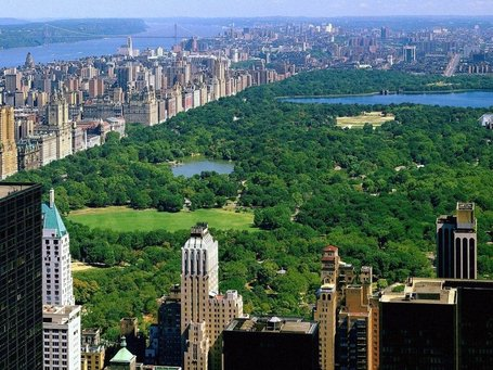 70_centralpark_newyork_freedesktopwallpaper_l_medium