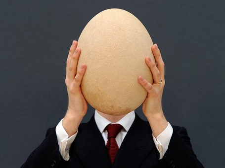 Elephant-bird-egg-auctioned_65837_600x450_medium