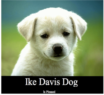 Ike_davis_dog_medium