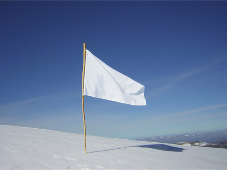 White-flag_medium