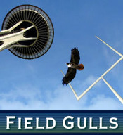 Fieldgulls_medium