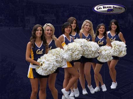 1024x768_cal_bears_cheerleaders_14_wallpaper_medium