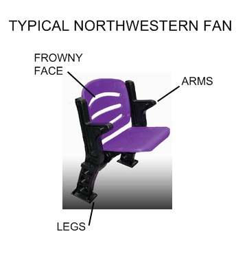 Northwestern-fan_medium